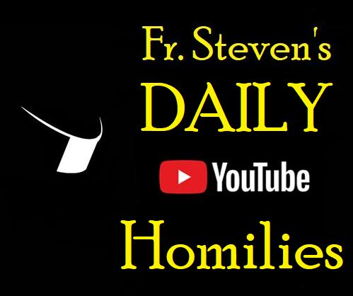 fr steven daily homilies